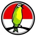 Tips Burung Kicauan icon