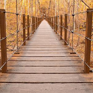 golden-grove-bridge-hdr-by-somadjinn.jpg