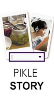 Screenshot of Pikle Story (Image Search)