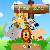 Animal And Birds Sounds