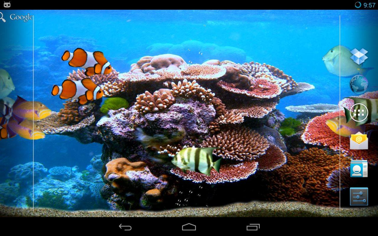 Tropical Fishes Aquarium Android Apps On Google Play