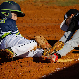 by Wes  Hall - Sports & Fitness Baseball
