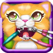 Precious Kitty Dentist-Pet Vet