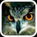 Aves de España icon