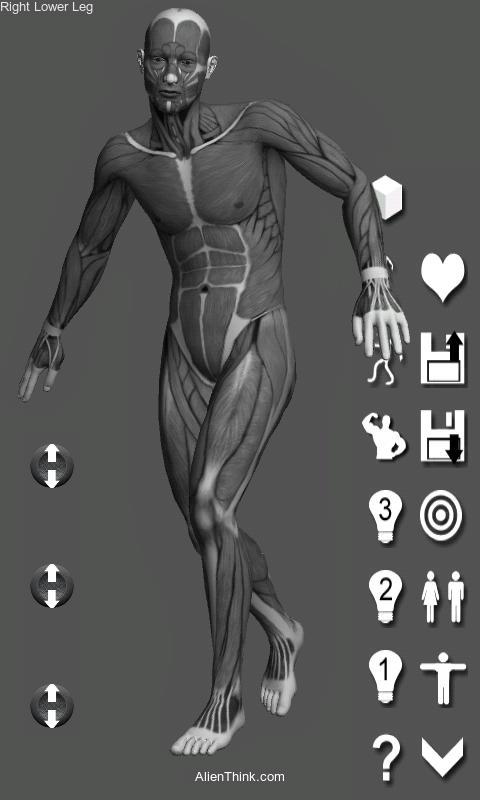 Download Pose Tool 3D Apk | Comics - Alternative App Marketplace