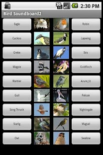 The Bird Soundboard 2 - screenshot thumbnail