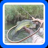 101 Tips Fly Fishing
