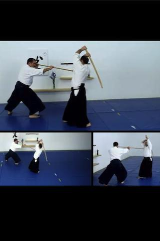 Aikido Weapons Free - screenshot