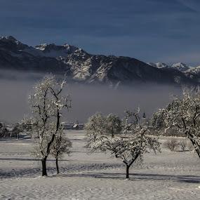 Apples! by Jože Borišek - Landscapes Starscapes ( bohinj-slovenia )
