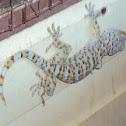 Leopard Gecko, Tokey, Cicak,