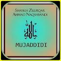 Shaykh Zulfiqar Ahmad icon