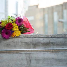 Love Abandoned  by Sharmila Narwani - Flowers Flower Arangements ( bouquet, flower arrangements, flowers, flower,  )