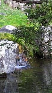 Tea Garden Live Wallpaper- screenshot thumbnail