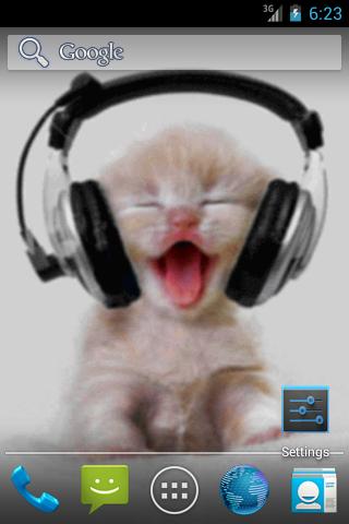 Картинки котенка в наушниках