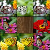 Memory (Butterflies)