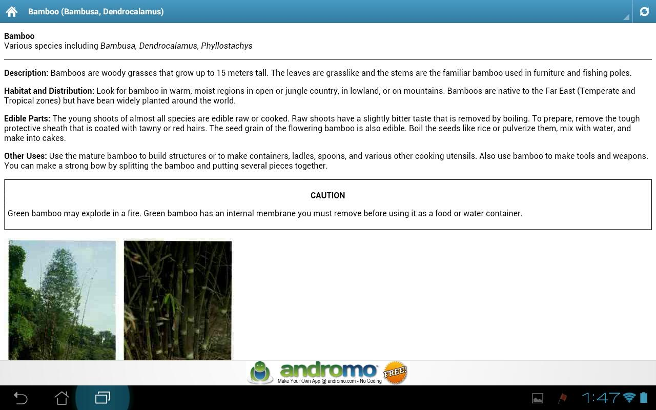 Edible and Medicinal Plants- screenshot