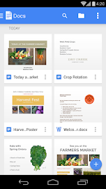Google Docs Screenshot 1