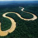 アマゾン川ゲーム icon