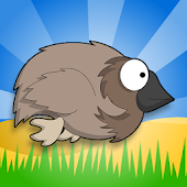 Flappy Emu