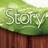 The Story (ViewTheStory.com)