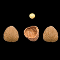 3 Shell Game Magic Trick icon