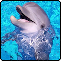 Blew Dolphin Game logo