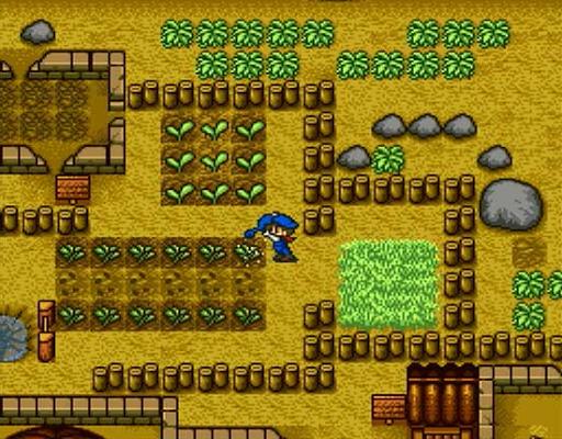 Harvest Moon Simulator