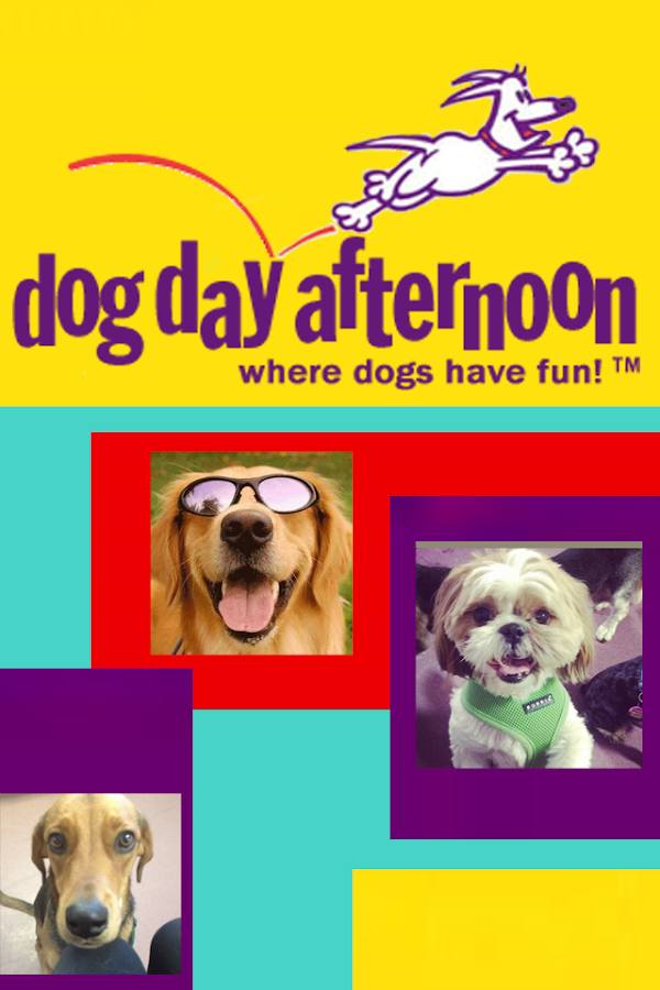 Dog Day Afternoon- screenshot