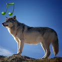 Animal sounds and photos icon