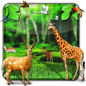 Forest HD Live Wallpaper Android Apps on Google Play