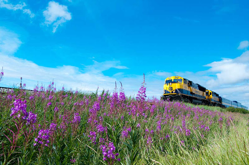 The Alaska Railroad runs from Anchorage up to Seward.