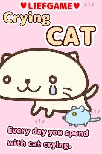 Life of crying cat