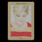 Mein Tarot Pro icon
