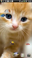 Screenshot of KITTY & FISH LIVE WALLPAPER(4)