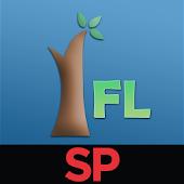 SP IFL