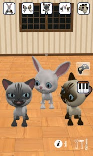 Talking 3 Friends Cats & Bunny - screenshot thumbnail