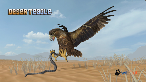Desert Eagle 3D Sim