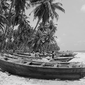 Fisherman's Day by Sonika Sharma - Black & White Landscapes ( beaches, black and white, landscape, daylight, b&w )