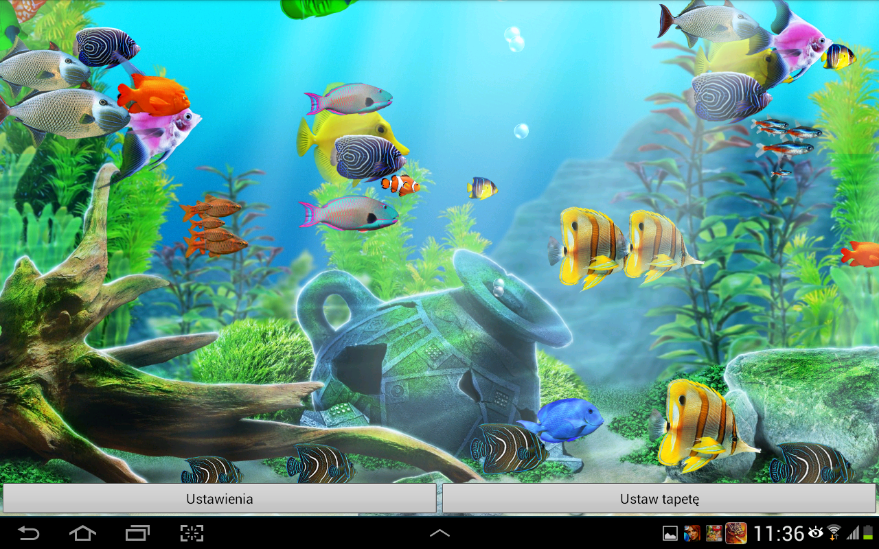 free download aquarium live wallpaper for android