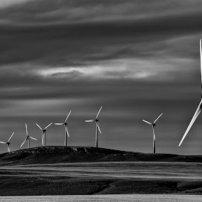 by William Tipper - Black & White Landscapes ( b&w, dramatic, wind turbines, landscape )