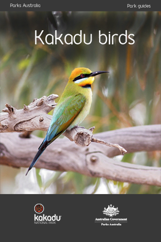 Kakadu Birds