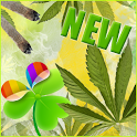 Rasta Theme v2 for GO Launcher icon