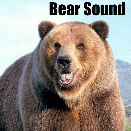【免費音樂App】Bear Sounds-APP點子