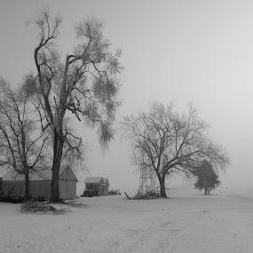 Icy Fog by Howard Mattix - Landscapes Weather ( iowa, foggy, frozen landscape, farmstead, winter weather, river bottom, early janurary,  )