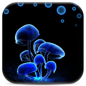 Fluorescence live wallpaper