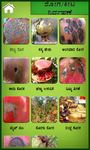 Pomegranate Kannada- screenshot thumbnail