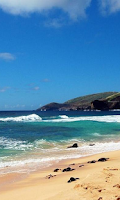 Screenshot of Hawaii Wallpapers