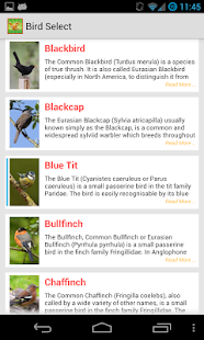 Bird Quiz Alarm Clock - screenshot thumbnail