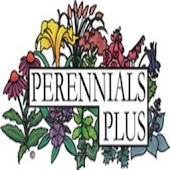 Perennials Plus