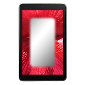 Mirror Flower Frame Pack 1